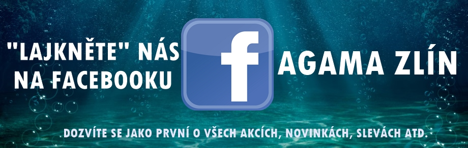 FB-SK